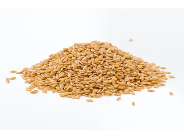 Organic Golden Linseed