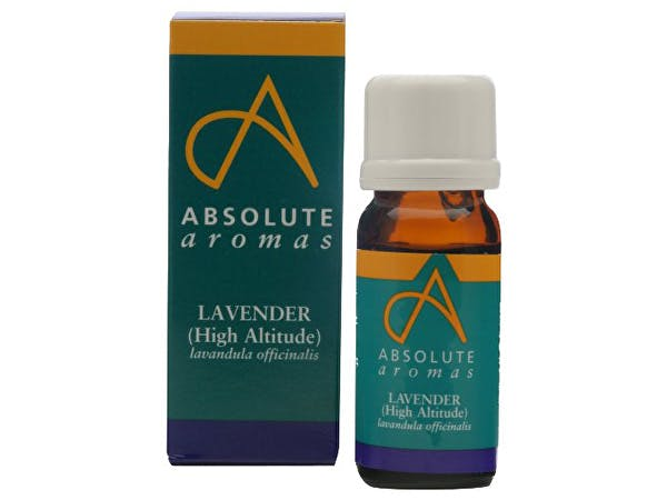 Absolute Aromas  Lavender High Altitude Oil