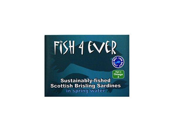 Fish 4 Ever  Scottish Brisling Sardines In Spring Water